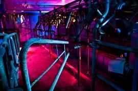 工場を赤と紫のライトでライトアップ